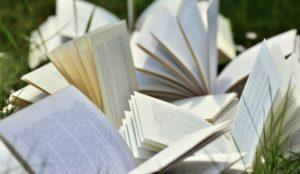 Rencontre littéraire avec Leïla Slimani : Chanson Douce @ En Ligne via Zoom